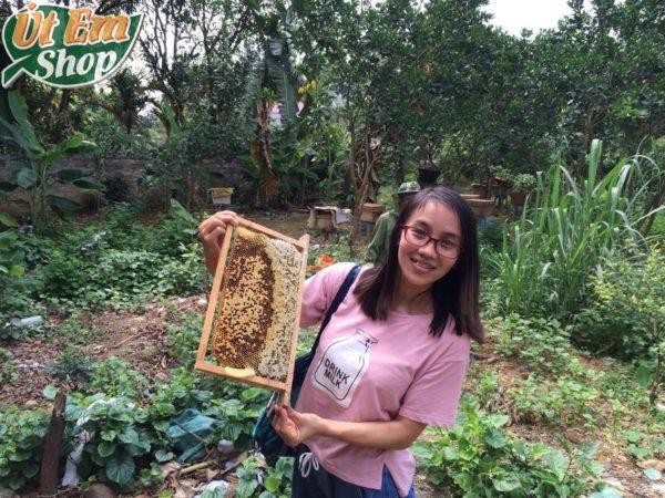 Út Em tại vường ong