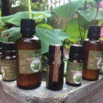 Tinh dầu sả chanh từ vườn Út Em
